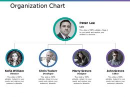 Organization Chart Ppt Professional Visuals