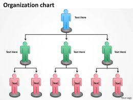 Organization chart ppt slide 24