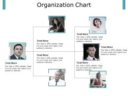Organization Chart Ppt Slides Download