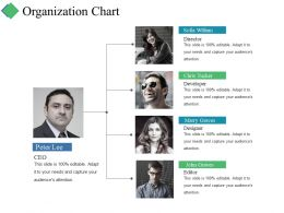 Organization Chart Ppt Summary Slide