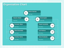 Organization Chart Process Ppt Powerpoint Presentation Information