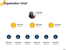 Organization Chart R579 Ppt Powerpoint Presentation Styles Graphics Design