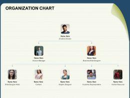 Organization Chart Representative N177 Ppt Powerpoint Presentation Summary