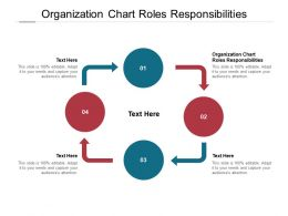 Organization Chart Roles Responsibilities Ppt Powerpoint Presentation Tips Cpb