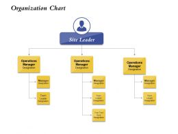 Organization Chart Site Leader Ppt Powerpoint Presentation Styles Graphics Download