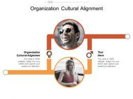 Organization Cultural Alignment Ppt Powerpoint Presentation Gallery Designs Cpb