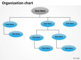 Organization design 33