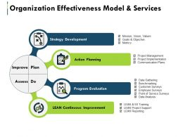 Organization Effectiveness Model And Services Ppt Summary Skills