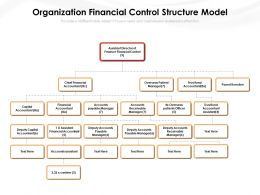 Organization Financial Control Structure Model