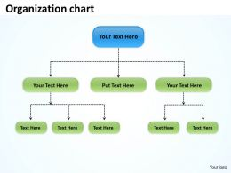 organization flow chart 36
