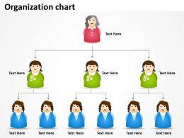 Organization framework 37