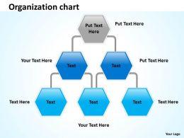 Organization graph 38