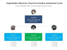 Organization Hierarchy Chart For Formative Assessment Cycle Infographic Template