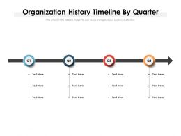 Organization History Timeline By Quarter