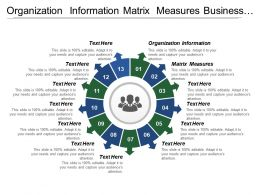 Organization Information Matrix Measures Business Process Change Roadmap