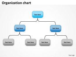 Organization layout 40