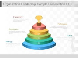Organization Leadership Sample Presentation Ppt