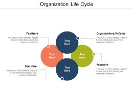 Organization Life Cycle Ppt Powerpoint Presentation Gallery Layout Ideas Cpb