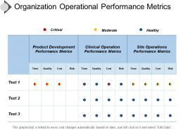 Organization Operational Performance Metrics Presentation Outline