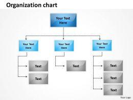 organization Plan 42