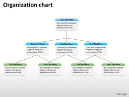 Organization ppt chart 45