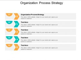 Organization Process Strategy Ppt Powerpoint Presentation Infographic Template Designs Cpb