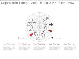 Organization Profile Area Of Focus Ppt Slide Show