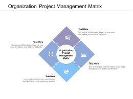 Organization Project Management Matrix Ppt Powerpoint Presentation Portfolio Slides Cpb