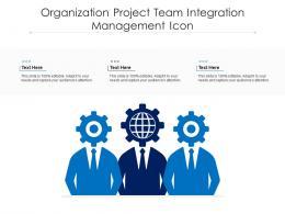 Organization Project Team Integration Management Icon