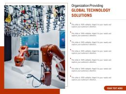 Organization Providing Global Technology Solutions
