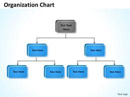 Organization scheme 46