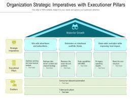 Organization Strategic Imperatives With Executioner Pillars