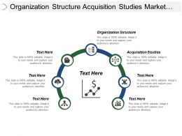 Organization Structure Acquisition Studies Market Assessment Studies