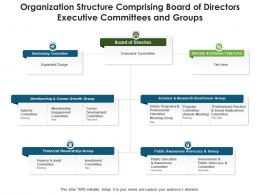 Organization Structure Comprising Board Of Directors Executive Committees And Groups