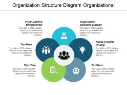 Organization Structure Diagram Organizational Effectiveness Funds Transfer Pricing Cpb