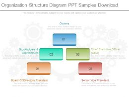 Organization Structure Diagram Ppt Samples Download