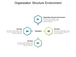 Organization Structure Environment Ppt Powerpoint Presentation Summary Layout Cpb