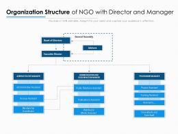 Organization Structure Of NGO With Director And Manager