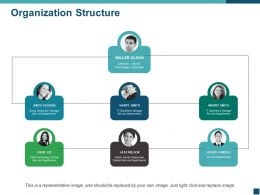 Organization Structure Ppt Clipart