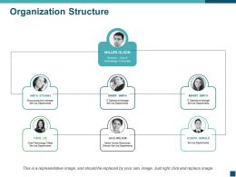 Organization Structure Ppt Picture