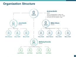 Organization Structure Ppt Template