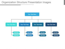 Organization Structure Presentation Images