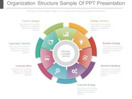 Organization Structure Sample Of Ppt Presentation