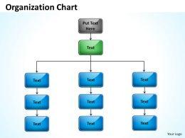 Organization synopsis 50