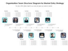 Organization Team Structure Diagram For Market Entry Strategy Infographic Template