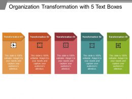 Organization Transformation With 5 Text Boxes