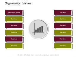 Organization Values Ppt Powerpoint Presentation Model Infographics Cpb