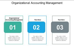Organizational Accounting Management Ppt Powerpoint Presentation Infographics Cpb