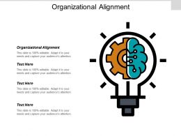 Organizational Alignment Ppt Powerpoint Presentation Pictures Outfit Cpb