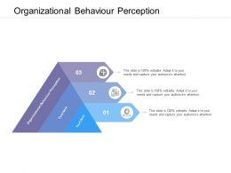Organizational Behaviour Perception Ppt Powerpoint Presentation Show Elements Cpb